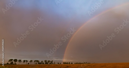 Fotobehang Cappuccino Beautiful rainbow over fields