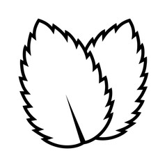 Two peppermint / spearmint mint or mentha leaves line art vector icon for apps and websites