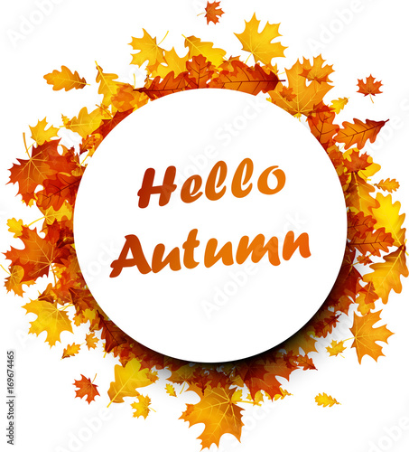 Hello autumn background with golden leaves.