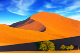 Plants and bushes in a vast desert - 169684086