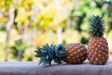 two  Pineapple on wood table with nature background - 169695018