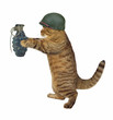The cat soldier is holding a real grenade. White background.