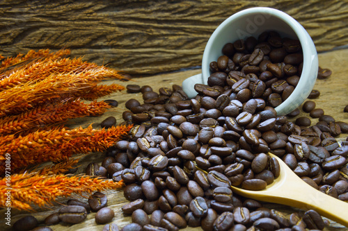 Fotobehang Koffiebonen pile of medium or dark roasted coffee beans and white cup with wooden spoon and dry rice on old wooden plank. coffee concept