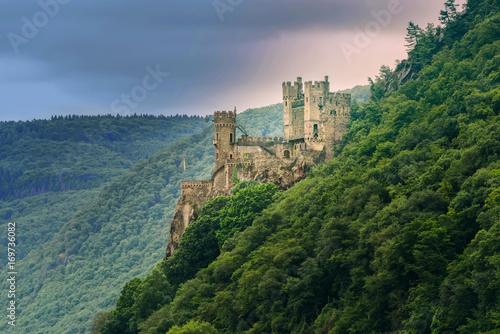 Foto Murales The Rheinstein Castle in Germany