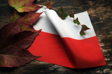 Flaga polska...poważnie?
