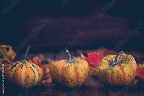Autumn pumpkins with colorful leaves on the old wooden background
