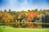 Foliage reflections on a lake - 169779810
