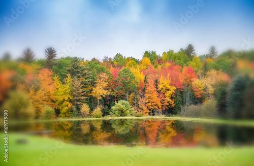 Foliage reflections on a lake
