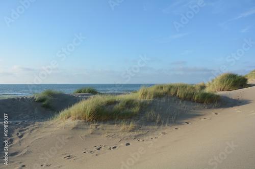 In de dag Noordzee In der Mitte von Sanddünen an der Nordsee mit dem Meer im Hintergrund