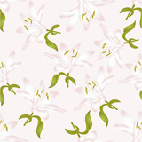 Seamless texture white Lily Lilium candidum, a white flower with leaves  vector illustration editable Hand drawn