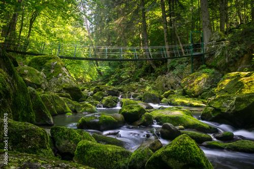 Papiers peints Rivière de la forêt Buchberger Leite Wildbachklamm Naturfluss