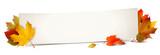 Banner und bunte Herbstblätter - 169880418