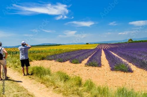 Foto op Canvas Lavendel Lavande et tounesols.