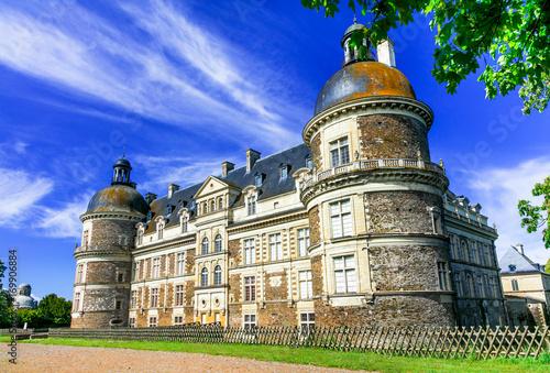 Fotobehang Freesurf amazing castles of Loire valley - beautiful elegant Chateau de Serrant. France