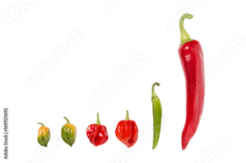 Fotobehang Hot chili peppers Different Chili Peppers