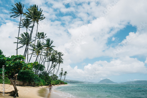 Fotobehang Tropical strand Palms on beach in Hawaii