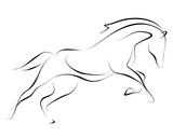 Fototapeta Konie - Running black line horse on white background. Vector graphic. © Nadya