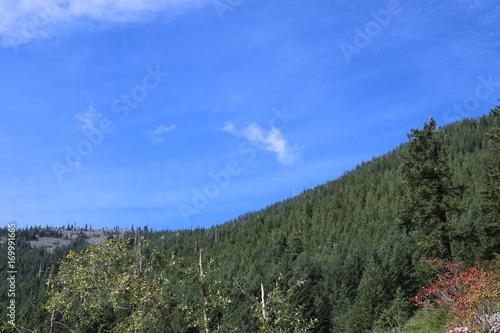 Fotobehang Khaki Mountain pass to the Puget Sound