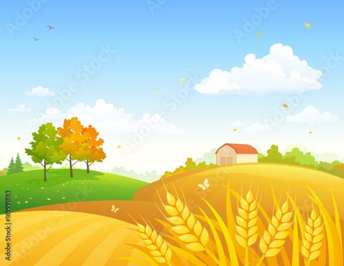 Plexiglas Boerderij Autumn farmland