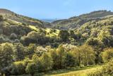 scenic stettbacher Tal in the german forest region Odenwald