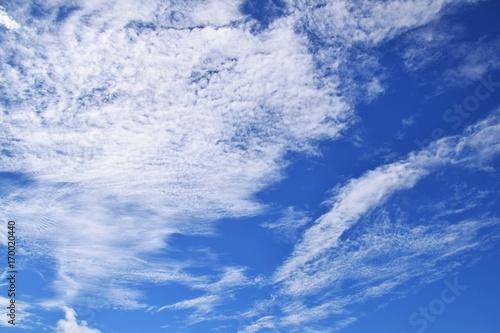 Fotobehang Herfst 秋空と白い雲