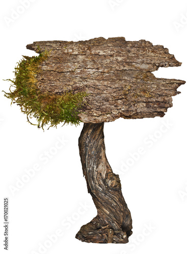 Fotobehang Betoverde Bos Aged natural wood sign/Natural Aged wood sign with moss on isolated background