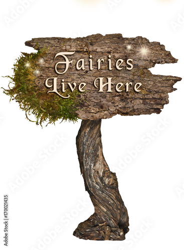 Fotobehang Betoverde Bos Aged natural wood sign with letters Fairies Live Here/Natural Wood sign with Letters Fairies Live Here on isolated background