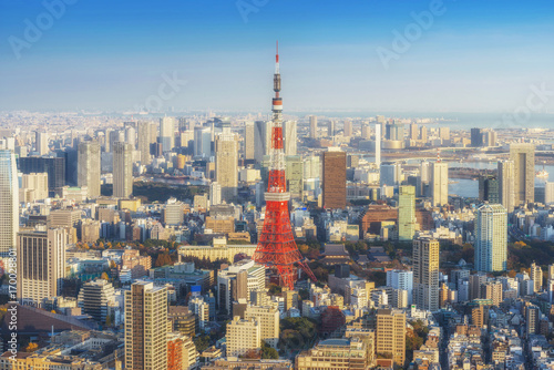 Skyline of Tokyo Cityscape with Tokyo Tower at sunset, Japan Poster
