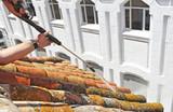 traditionelle Dachreinigung - 170054860