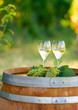 Tasty white wine on wooden barrel on grape plantation background