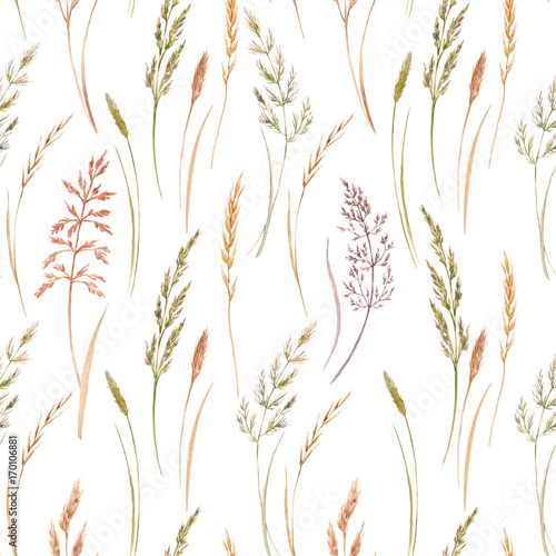 Wild field grass pattern - 170106881