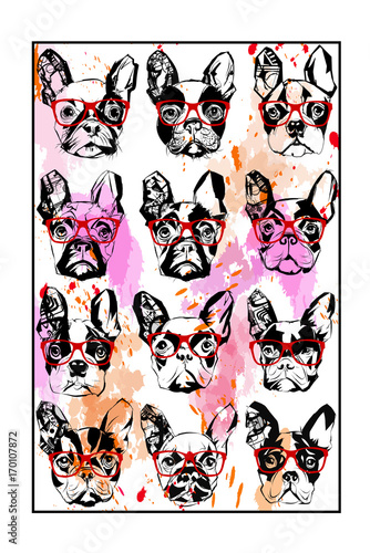 Tuinposter Art Studio Portraits of french bulldog wearing sunglasses