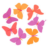 Vector set of colorful butterflies on white background.