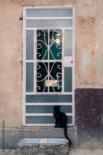 Fotobehang Havana Black cat waiting at the door