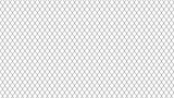 metal mesh fence. background of metal mesh isolated on white background - 170142289