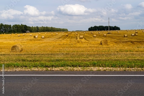 Fotobehang Honing agricultural landscape weeding a part of the highway