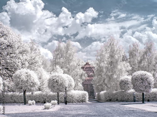 Papiers peints Moscou Alleys in the old park of the estate of Kuskovo, the former estate of Count Sheremetyev. Infrared photography