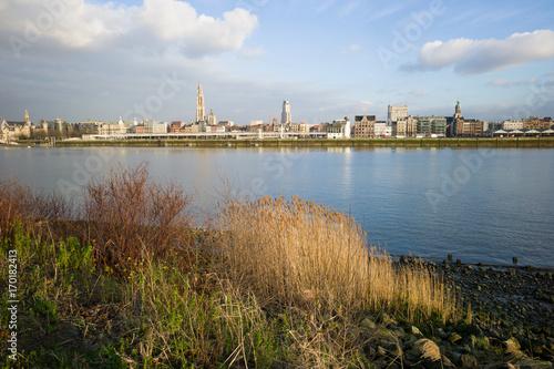 Fotobehang Antwerpen Antwerpen , landscape on Scheldt