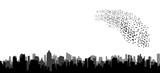 silhouette of flying birds, flock - 170235816