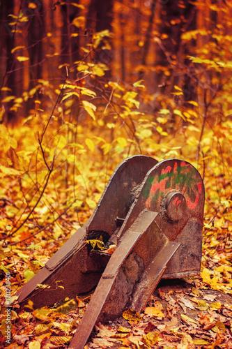 Foto op Canvas Baksteen Photo of iron thing on orange autumn forest