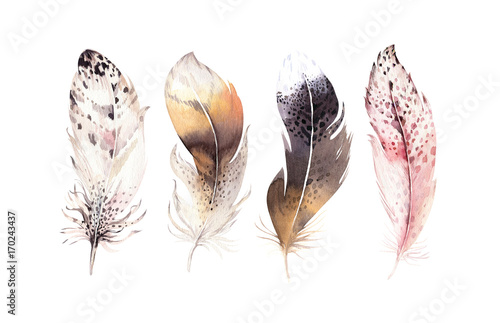 Hand drawn watercolor paintings vibrant feather set. Boho style wings. illustration isolated on white. Bird fly design for T-shirt, invitation, wedding card. Rustic Owl decoration - 170243437