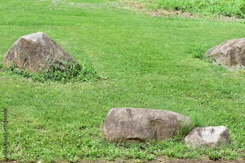 石と草 Poster