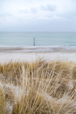 Dünengras weht im Wind, im Hintergrund das Meer mit Holzpfählen