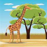 giraffe icon over africa jungles landscape colorful design vector illustration