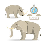 animals of african safari over white background colorful design vector illustration - 170253068