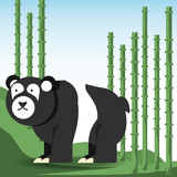 panda bear icon over bambu forest background colorful design vector illustration