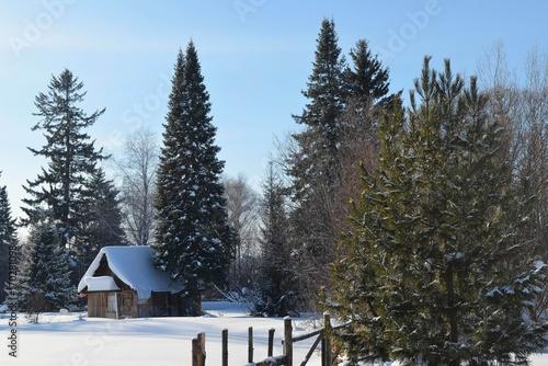 Fotobehang Grijs Сказочный домик в лесу под снегом