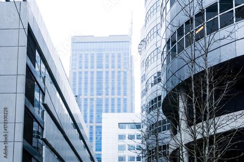 Foto op Plexiglas Rotterdam ROTTERDAM, Netherlands - February 7, 2017 : View of a modern glass skyscraper buildings of Rotterdam City.