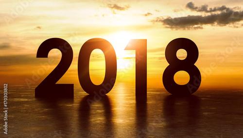 Silhouette 2018
