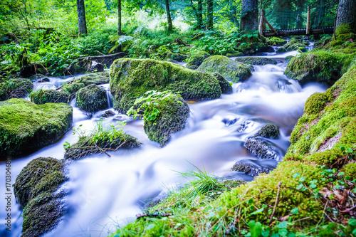 Wasserfälle von Triberg im Schwarzwald Wasserfall und Wildbach - 170304680